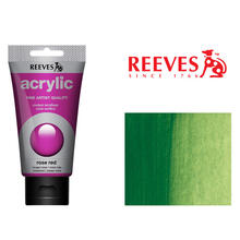 Reeves Acrylfarbe 75 ml, Hellgrün